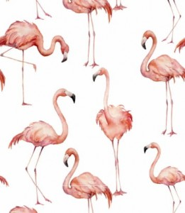 Tapeta Pink flamingo